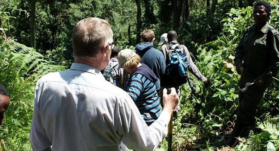 Tourists in Rwanda